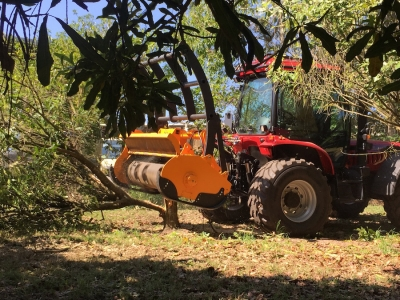 BM Better 130 with Serrat Forestry Mulcher